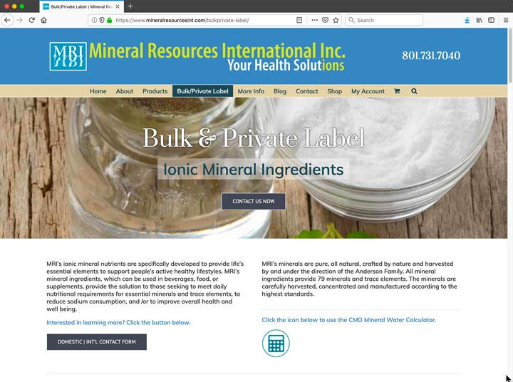 Mineral Resources International